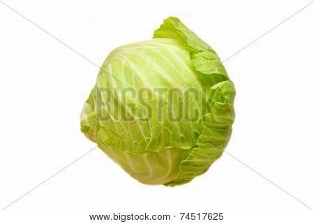 A Head Of Green Cabbage Isolated On White