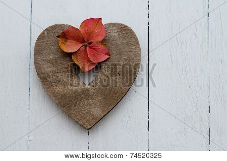 heart with autumn faded pink hydrangea flowerso