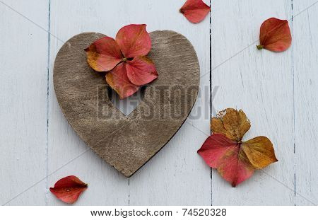 wooden heart with autumn faded pink hydrangea petals