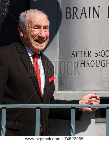 LOS ANGELES - OCT 23:  Mel Brooks at the Mel Brooks Street Dedication and Young Frankenstein Mural Presentation at the 20th Century Fox Lot on October 23, 2014 in Century City, CA