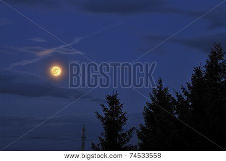 Full Moon In The Night