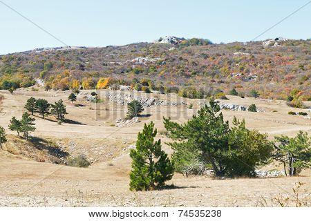 Landscape Of Mountain Plateau Ai-petri In Crimea