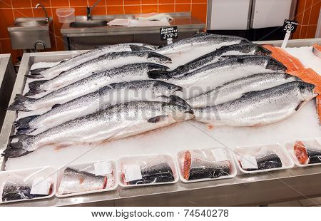 Samara, Russia - October 5, 2014: Raw Fish In Ice Ready For Sale At The Supermarket Magnit. Russia's