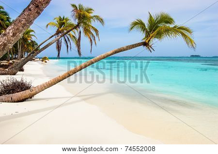 Paradise Beach On Caribbean Island