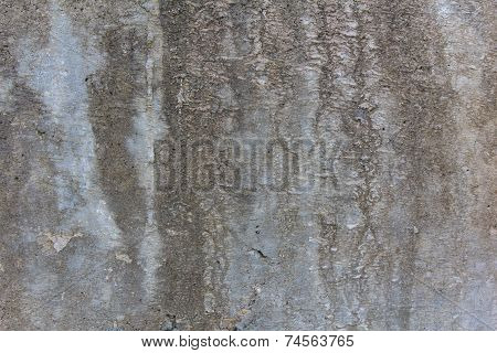 Textured Rotten Grey Wal