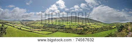 Green Meadows Panorama Near Dingle