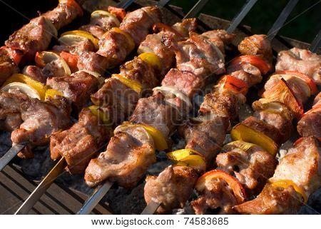 kebabs grilled with vegetables on metal skewers