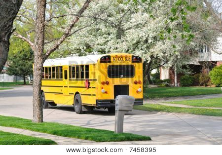 school bus in the street