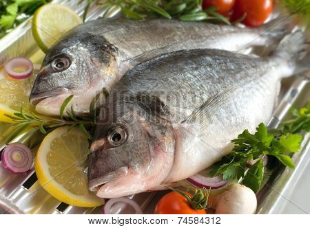 sea bream fish with the vegetables on a grill