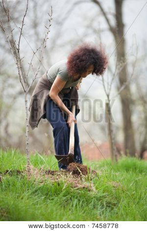 Young Redhead Lady Gardening