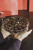image of bonbon  - Hand holding chocolate bonbons - JPG