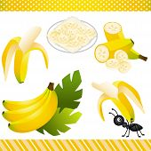 Постер, плакат: Banana Digital Clipart