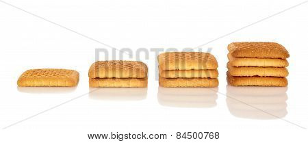 Stack Of Biscuits 2