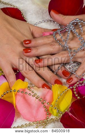 Manicure - Beautiful manicured woman's hands with red nail polish on rose petals