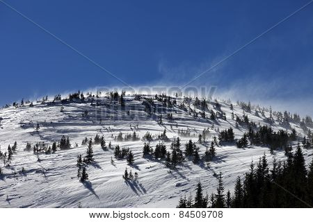 Winter Carpathian Mountains At Sun Windy Day