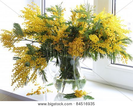Bouquet From Branches Of A Yellow Mimosa At A Window
