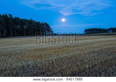 Stubble Field Under Rising Moon
