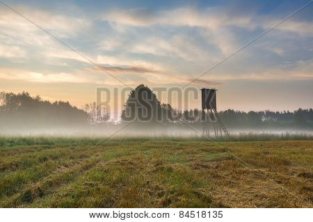 Sunrise On Foggy Meadow With Raised Hide