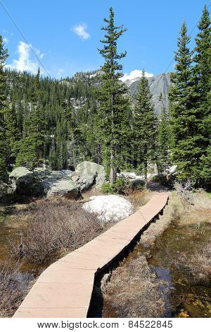 Hiking Trail In Rocky Mountains