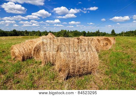 Hay And Straw Bales On Farmland Under Blue Sky In Summer Day