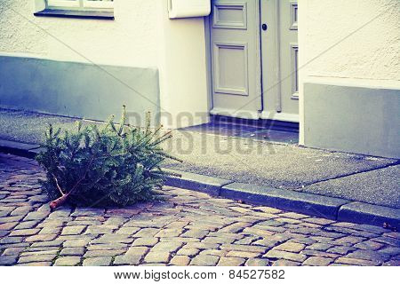Disused Christmas Tree Thrown On The Street, Vintage Style