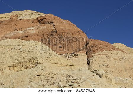 Red Rock National Park Climber