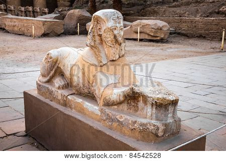 Anrosphinx In The Karnak Temple Complex