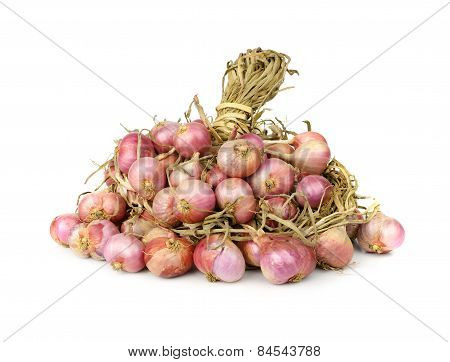 Shallots Or Onion Isolated On White Background