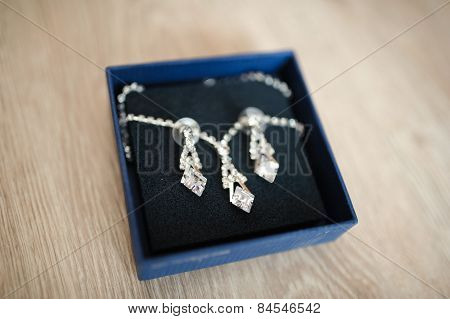bride's necklace and earrings is ready for bride's best day