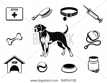 Dog vet clinic icons
