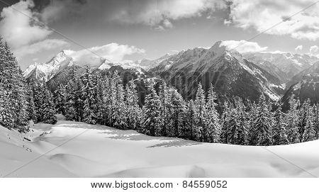 fantastic winter panorama