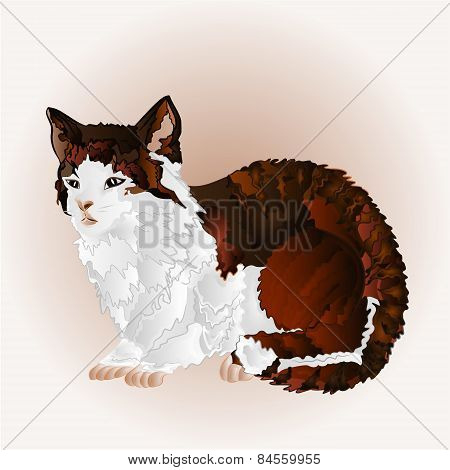 Kitty Sitting Vector