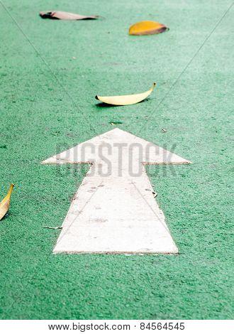 White Straight Arrow