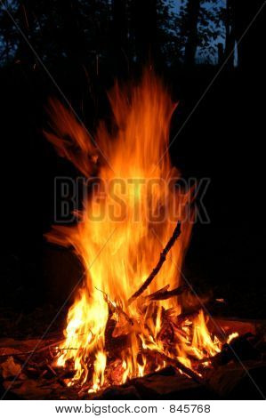 Bonfire 1