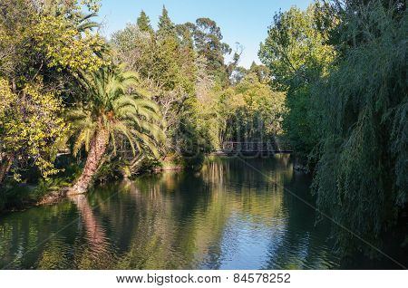 Lake And Wooden Bridge In A Park