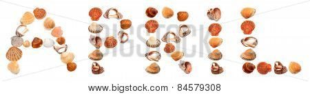 A P R I L Text Composed Of Seashells