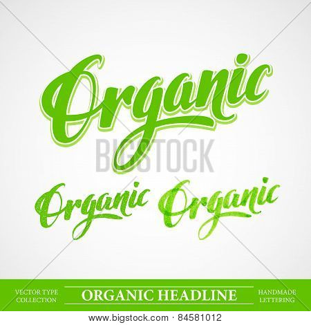 Title Organic. Vector Handmade lettering