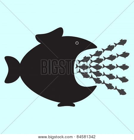 Small Fishes And Big One