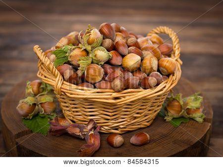 Fresh hazelnuts on the table
