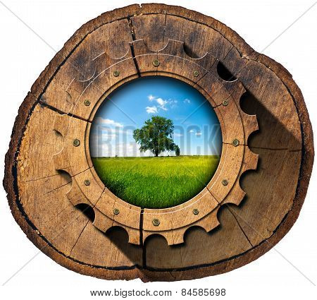 Green Economy - Tree Trunk And Gear