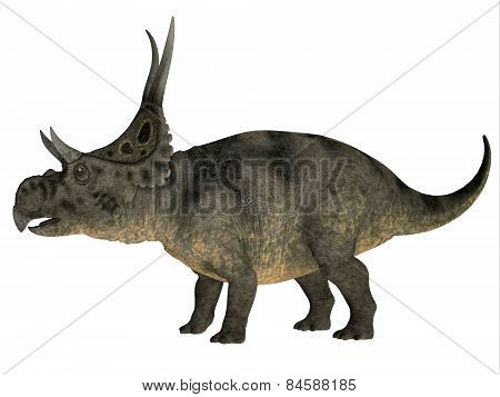 Diabloceratops Over White