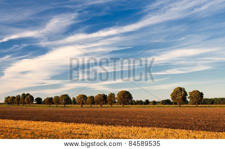 Plowed Field And Sky