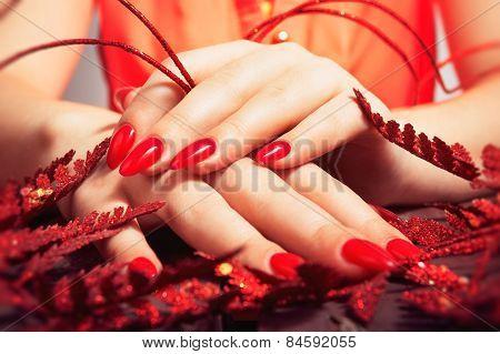Female hands. Manicure.