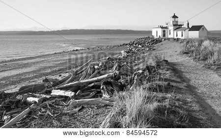 Driftwood Beach West Point Lighthouse Cape Jetty Discovery Park Seattle