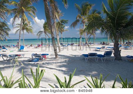 mexico on beach view