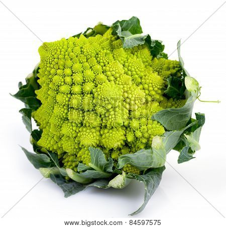 Roman Cabbage Isolated
