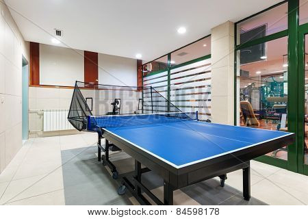 Entertainment Room With Tennis Table