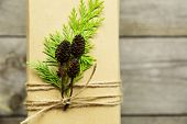 picture of embellish  - Gifts wrapped in kraft paper tied with twine and embellished with natural details - JPG