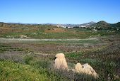 foto of wetland  - Panoramic view of wetlands and foothills, California