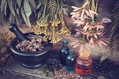 stock photo of tansy  - Vintage stylized photo of healing herbs bunches mortar and oil bottles herbal medicine - JPG